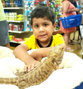 Scales and Tails Adoption Event - PetSmart #1031 (The Forum) @ PetSmart #1031 (The Forum)